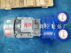 2BV液环式真空泵